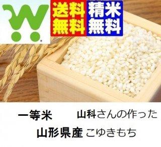 山形県産こゆきもち 玄米25kg 一等米 送料無料