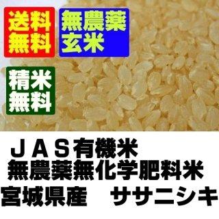 登米ライスサービス 無農薬米 宮城県登米産ササニシキ 玄米10kg