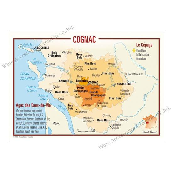 フランス製ワイン ポストカード[コニャック]10枚セット  UV018PC