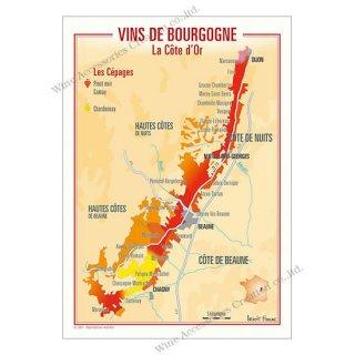 フランス製ワイン ポストカード[コート・ドール]10枚セット  UV211PC