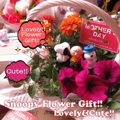 スヌーピー入り 鉢植え スヌーピーマスコット3個入り ◆お花は季節のお花でおまかせ♪ 誕生日プレゼント・記念日の贈り物におすすめのフラワーギフト プレゼント先へのお届け 配送日指定も可能…