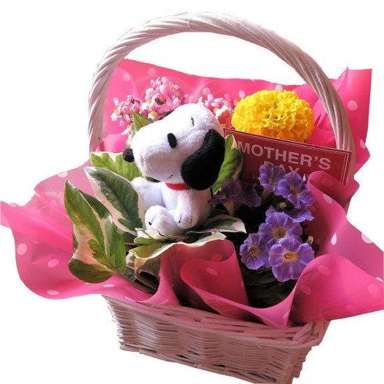 スヌーピー入り 花 鉢植え 誕生日プレゼント 記念日の贈り物におすすめのフラワーギフト プレゼント先へのお届け 配送日指定も可能…
