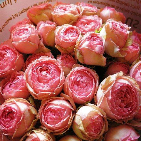 ミニバラ 花束 誕生日プレゼント ミニローズ ブーケ風花束