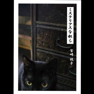 宮崎悦子写真集 「ミステリアスな奴ら」