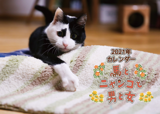 <img class='new_mark_img1' src='https://img.shop-pro.jp/img/new/icons1.gif' style='border:none;display:inline;margin:0px;padding:0px;width:auto;' />2021馬ニャンカレンダー 送料無料
