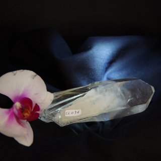 CL036  Crystalina Lemurian (Golden,Rehealed Key, 8 Face) 305g