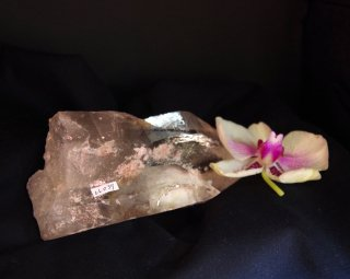 CL039  Crystalina Lemurian (Time Link, Future, Window Face) 880g