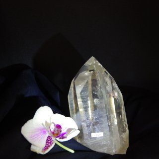 CL041  Crystalina Lemurian (Golden,Temple, Time Link Future, Bridges+Floaters, Healed Key) 1035g