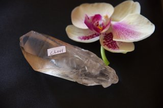 CL001  Crystalina Lemurian (Spiral Key, Time Link) 125g