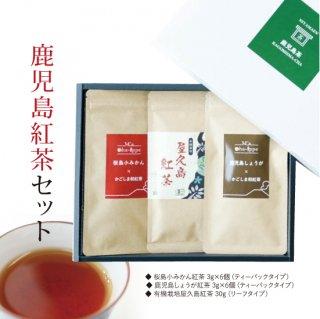 鹿児島紅茶セット