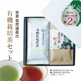 世界自然遺産の有機栽培茶セット