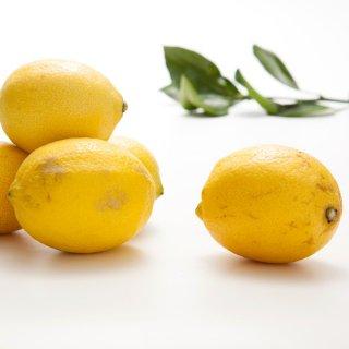 【ワケあり】無農薬ハウス栽培レモン (量り売り/kg)