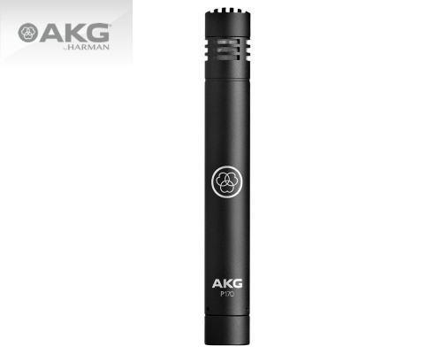 AKG レコーディング用スティック型コンデンサー・マイクロホン Project Studio Line P170