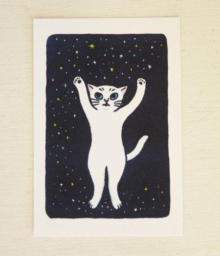 ◆ハンドメイド◆片岡まみこ/ポストカード/星猫