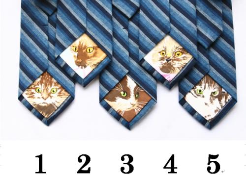 隠れネコタイ ブルー/kitten's ribbon <img class='new_mark_img2' src='https://img.shop-pro.jp/img/new/icons49.gif' style='border:none;display:inline;margin:0px;padding:0px;width:auto;' />