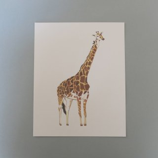 <img class='new_mark_img1' src='//img.shop-pro.jp/img/new/icons14.gif' style='border:none;display:inline;margin:0px;padding:0px;width:auto;' />giraffe poster