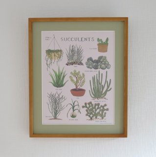<img class='new_mark_img1' src='//img.shop-pro.jp/img/new/icons14.gif' style='border:none;display:inline;margin:0px;padding:0px;width:auto;' />succulents framed poster
