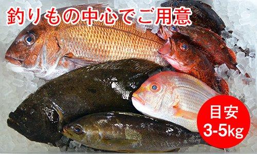 業務用鮮魚セット高級グレード/目安3-5kg