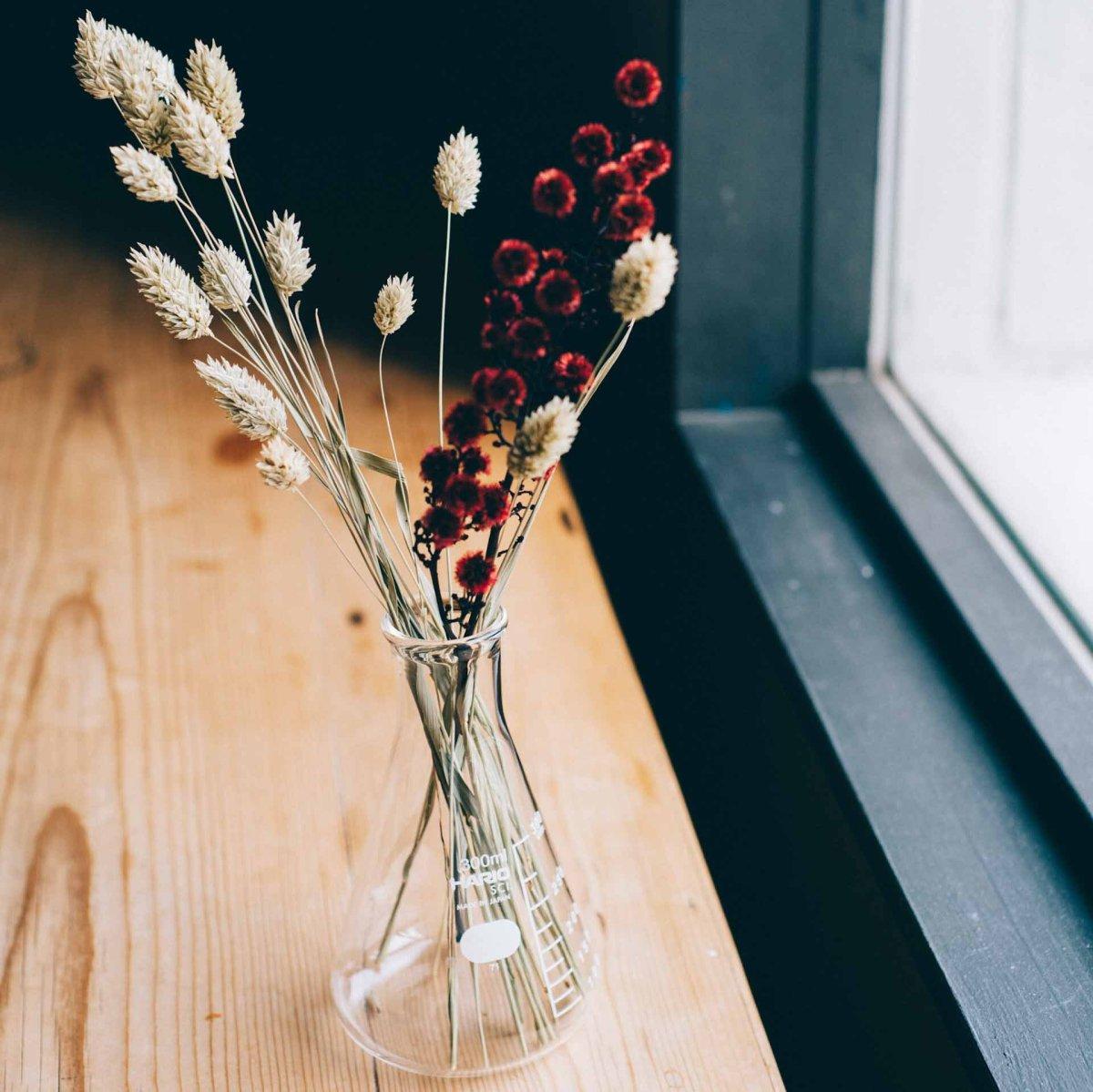 三角フラスコ(HARIO) 300ml