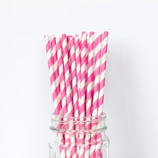 Pink Striped Straws set of 24