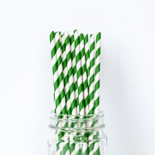 Green Striped Straws set of 24
