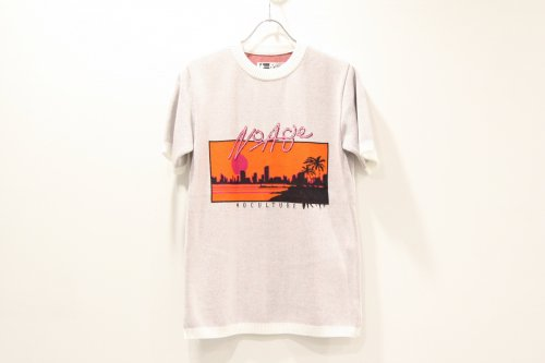 <img class='new_mark_img1' src='https://img.shop-pro.jp/img/new/icons47.gif' style='border:none;display:inline;margin:0px;padding:0px;width:auto;' />CITY / souvenir W jacquard Tee(WHITE)