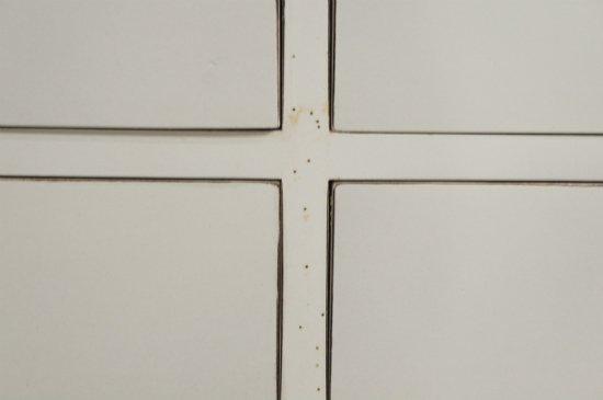 アンティーク調 20杯 ドロワーズチェスト マホガニー材 白家具