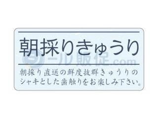 朝採りきゅうり / シール通販・農産・ 野菜・キュウリ