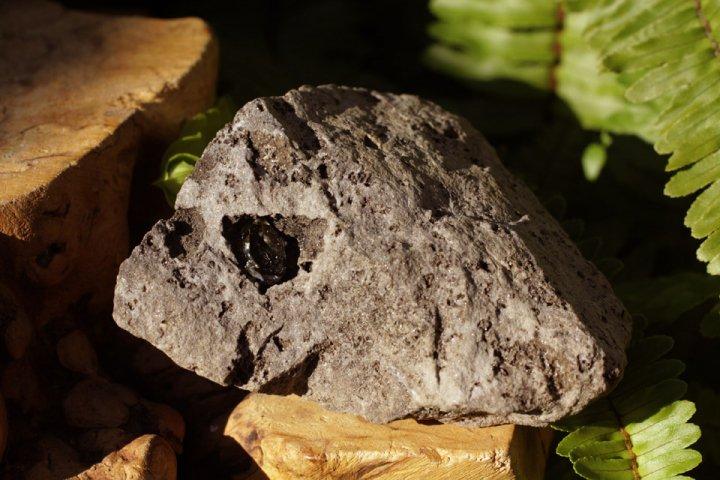 母岩付きハーキマー水晶001の画像