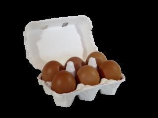 大地飼い自然卵 6個入りパック