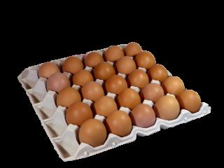 大地飼い自然卵 25個入り箱