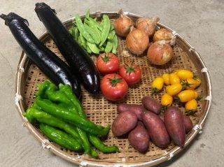 旬の野菜 おまかせ7種セット