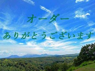 【C様セミオーダー品・超特大ラブラドライトのルドラクシャマーラーペンダント】第5・6チャクラ対応