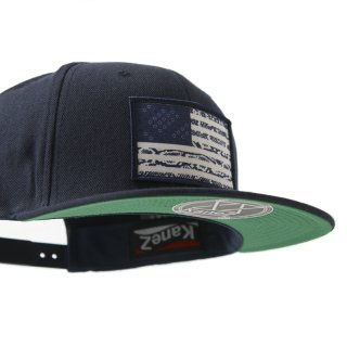 USA SNAKE FLAG CAP