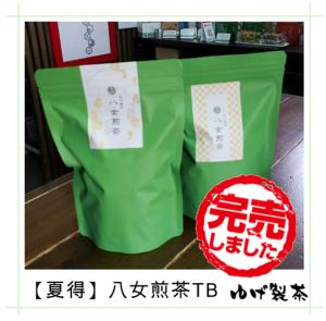 夏得(緑)八女煎茶TB4g×50包