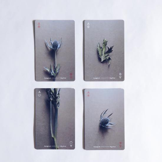 [OF PLANTS]PLAYING CARDS