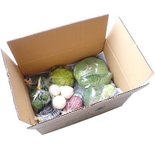 採れたて野菜BOX