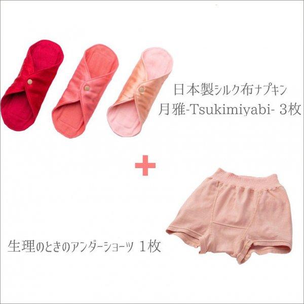 布ナプキン3枚セット+生理の時のアンダーショーツ1枚(茜または藍)◇4点セット