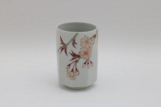 湯呑 山桜