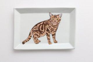 猫の角皿 D