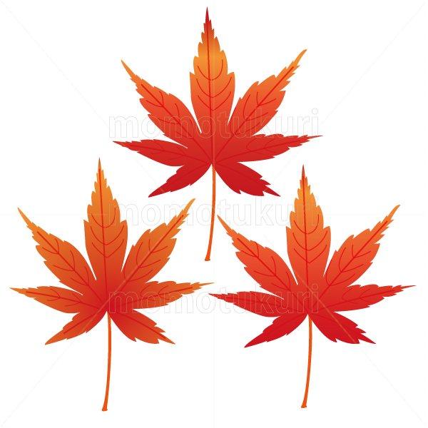 紅葉 もみじ 葉っぱ 3枚セット