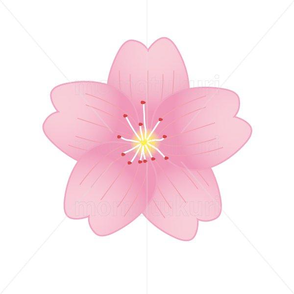 さくら (桜)