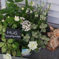 HUG* オリジナル garden寄せ植えset 『white color』