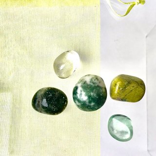 天然石 ヒーリングセット  ヘルス(健康)ツリーアゲート・サーペンティンwスティッヒタイト・オーシャンジャスパー・フローライト・水晶