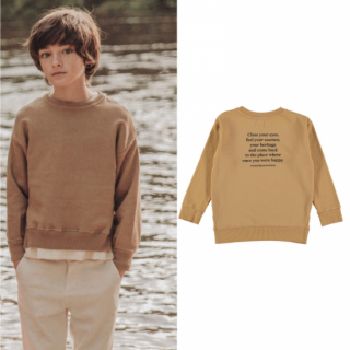 <img class='new_mark_img1' src='https://img.shop-pro.jp/img/new/icons14.gif' style='border:none;display:inline;margin:0px;padding:0px;width:auto;' />19AW the new society<BR>Leon sweater with text on the back