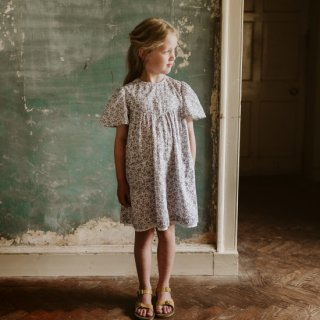 <img class='new_mark_img1' src='https://img.shop-pro.jp/img/new/icons14.gif' style='border:none;display:inline;margin:0px;padding:0px;width:auto;' />20SS Little Cotton Clothes<BR>Mary Dress Daisy / Floral Blue