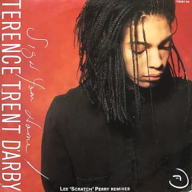 Terence Trent D'arby / Sign Your Name -Lee 'Scratch' Perry Remixes (10