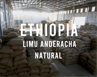<img class='new_mark_img1' src='https://img.shop-pro.jp/img/new/icons14.gif' style='border:none;display:inline;margin:0px;padding:0px;width:auto;' />ETHIOPIA LIMU ANDERCHA NATURAL