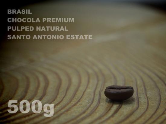 ブラジル ショコラ プレミアム パルプドナチュラル サント・アントニオ・エステート 【500g】
