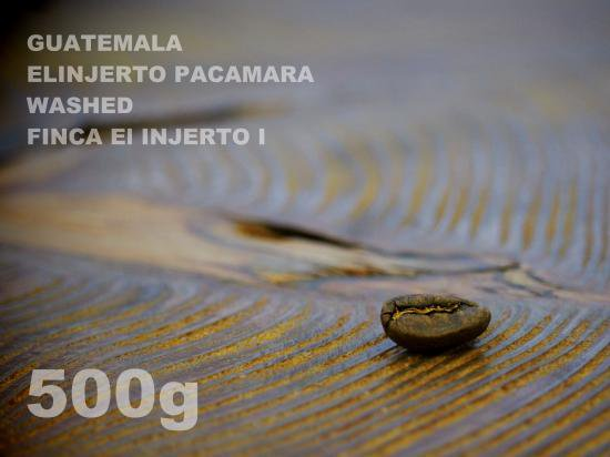 グァテマラ エルインフェルト パカマラ ウォッシュド エル・インフェルト・ウノ農園【500g】